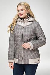 Куртка женская демисезонная в 2х цветах Шотландия в размерах 48-58