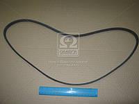Ремень поликлиновый   4PK1260 (пр-во DONGIL)