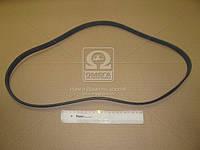 Ремень поликлиновый   5PK1280 (пр-во DONGIL)