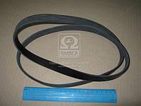 Ремень поликлиновый   5PK1290 (пр-во DONGIL)