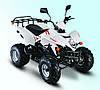 Квадроцикл Skybike Stinger 150