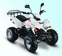 Квадроцикл Skybike Stinger 150, фото 1