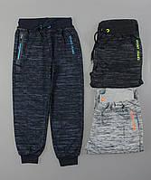 Спортивные брюки для мальчиков Setty Koop оптом, 8-16 лет. [Ростовка]