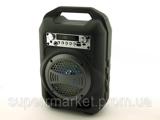 Колонка - чемодан BS12 9W boombox с караоке FM MP3, фото 2