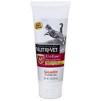 Nutri-Vet Uri-Ease витаминный комплекс для подкисления мочи котов 89 мл