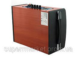 Kipo KB-Q1 20W, активная колонка-чемодан с караоке, фото 2