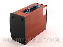 Kipo KB-Q1 20W, активная колонка-чемодан с караоке, фото 3