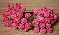 Калина сахарная розовая 40шт