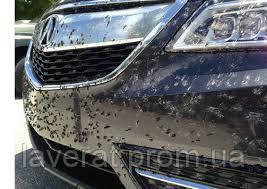 Зачем используют средство для удаления следов от насекомых ?