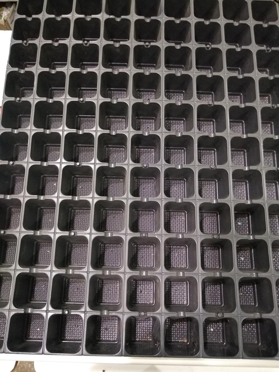 Кассета для рассады, комплект с поддоном  99 ячеек, Украина