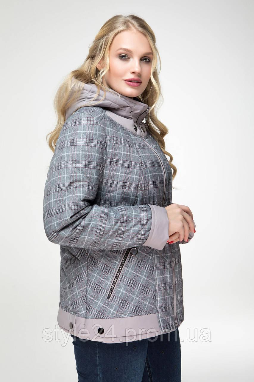ЖІноча осіння куртка великих розмірів в клітинку (48-58)  продажа ... dbd1d8e464c48