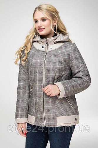 670c66ce732bf8 ЖІноча осіння куртка великих розмірів в клітинку (48-58): продажа, цена в  Одесі. куртки жіночі от