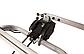 Крепление для велосипедов на фаркоп TAURUS BASIC 3, фото 2