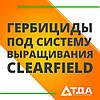 Захист соняшника системи вирощування Clearfield від бур'янів