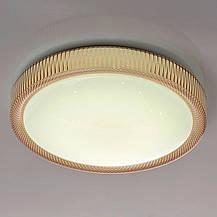 Светодиодный светильник 48W с пультом управления Z-light ZL 70029, фото 3