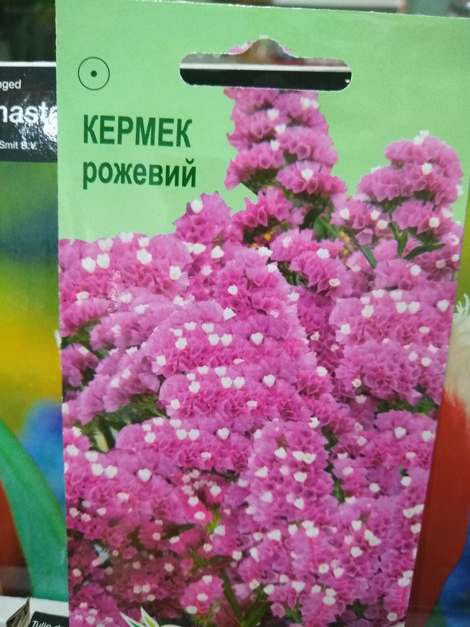 Кермек виїмчастий рожевий, 0.1 г
