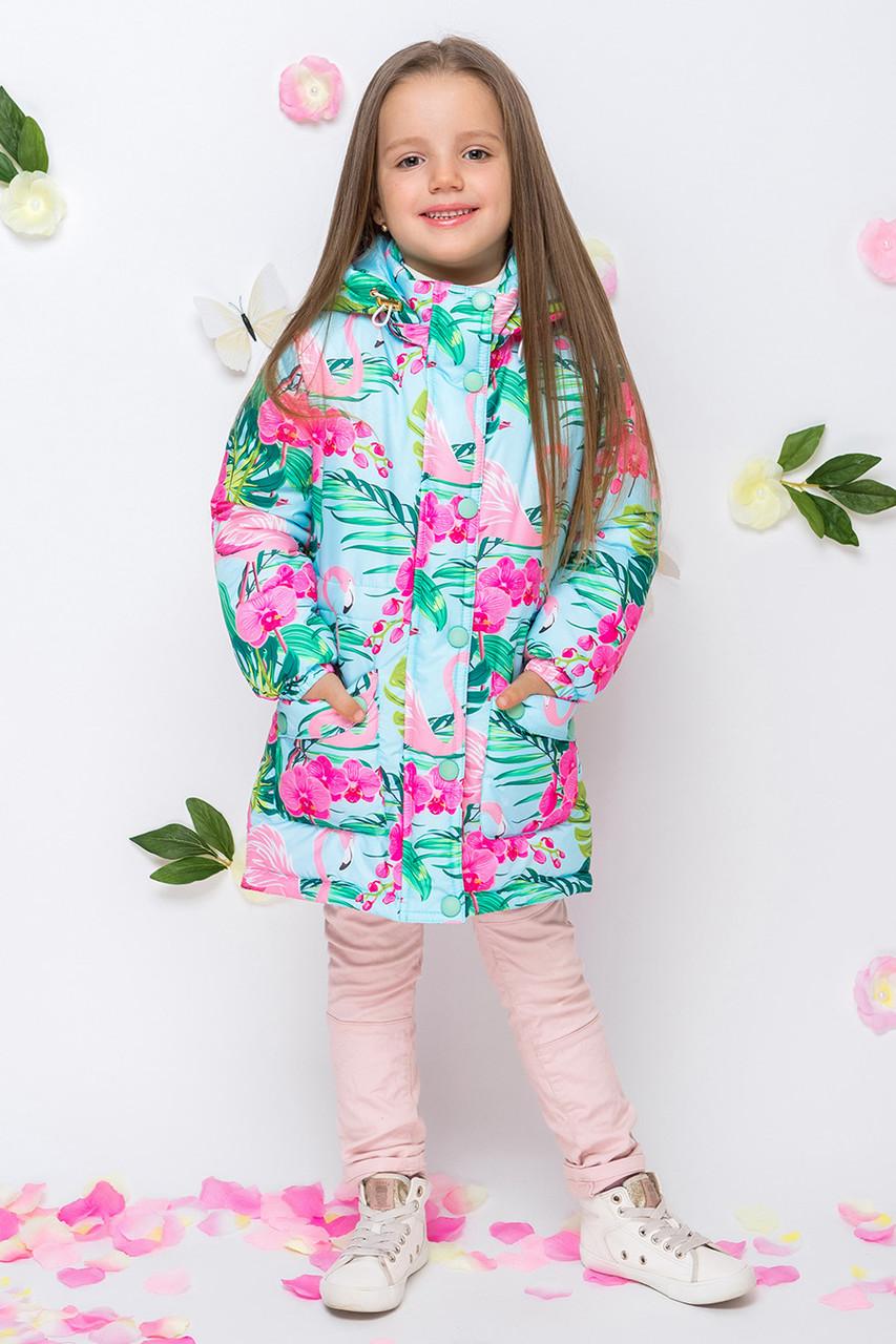 Детская демисезонная куртка для девочки VKD-1, 92-122