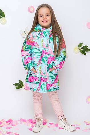 Детская демисезонная куртка для девочки VKD-1, 92-122, фото 2