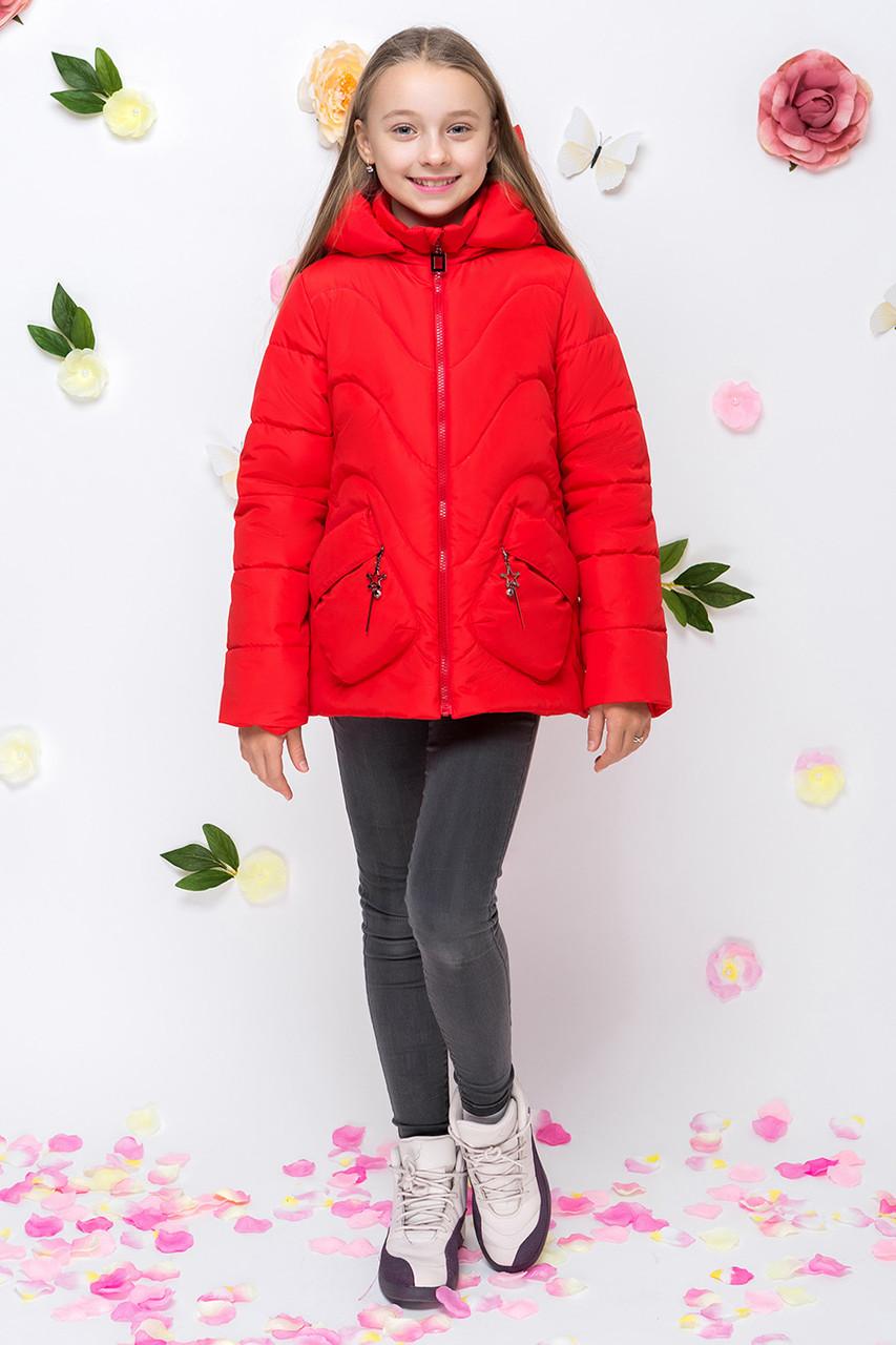 Детская демисезонная куртка для девочки vkd10, размеры 122-164