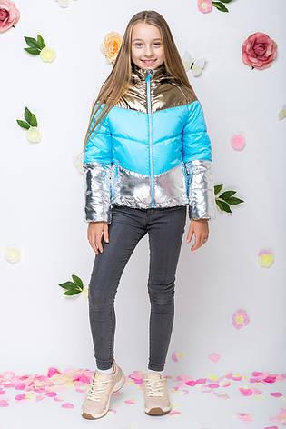 Детская демисезонная куртка для девочки vkd11, последний размер на рост 110 с голубым, фото 2