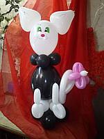 Кошечка из шаров
