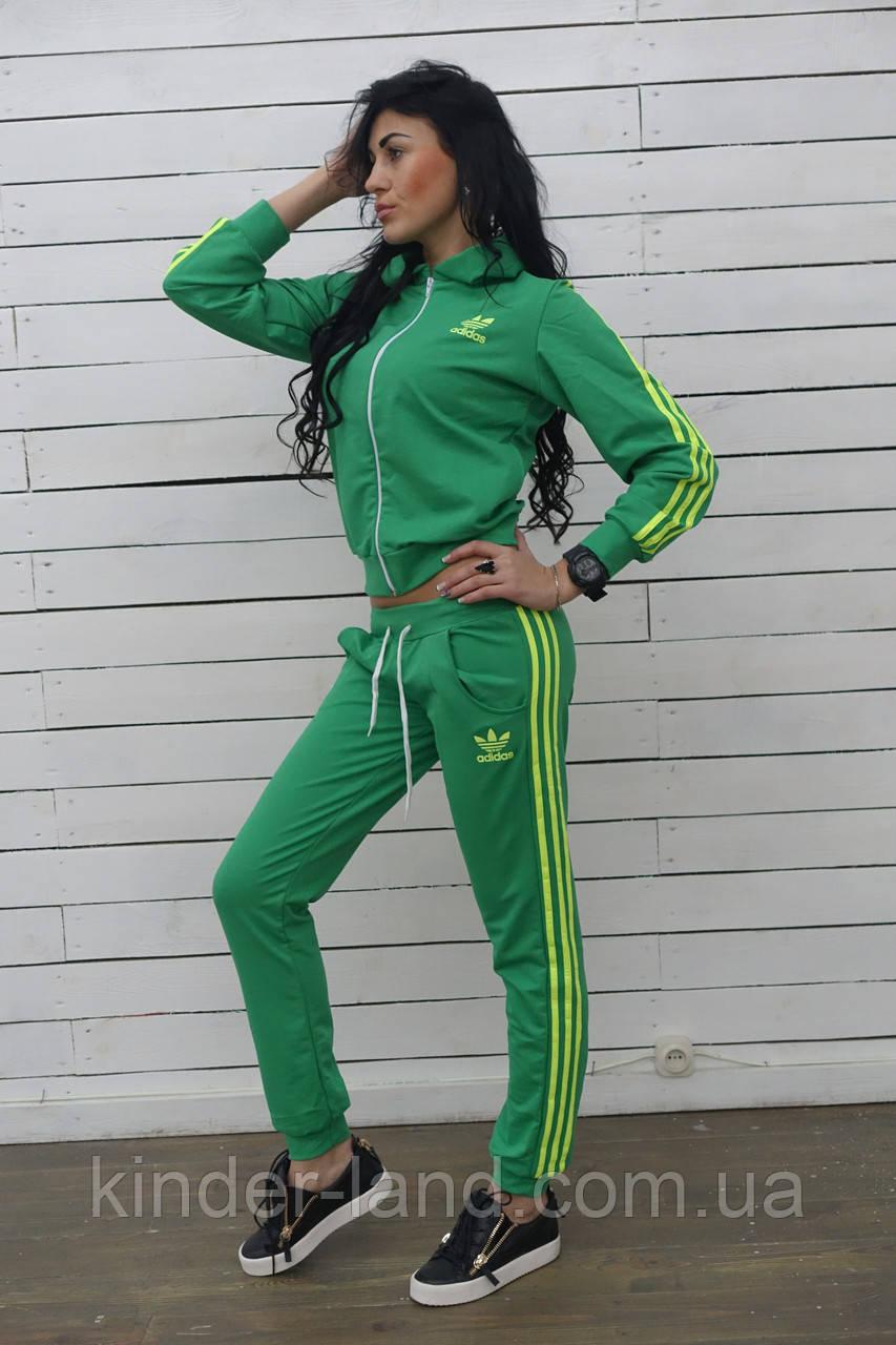 0bf373820c9 Спортивный костюм