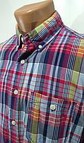Рубашка мужская 100% коттон, фото 3