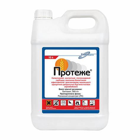 Гербицид Протеже аналог Базагран - бентазон 560 г/л, для сои, пшеници, рожь, ячменя, фото 2