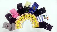 Детские носки демисезонные х/б Смалий, 24-26, 16 размер, ассорти