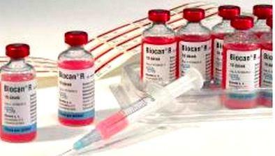 Вакцина Биокан-R, 1мл