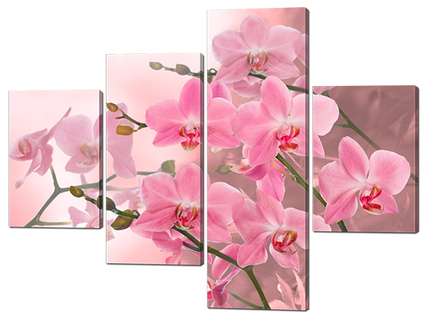Модульная картина Interno Холст Розовые цветки 146x109см (R484L)