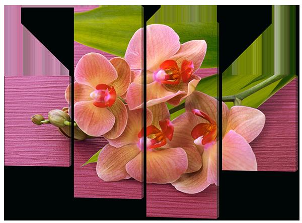 Модульная картина Interno Эко кожа Персиковая орхидея 106X77см (A497S)