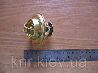 Термостат FAW-1061 (ФАВ)