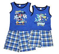 Безрукака + шорты для мальчика. Акула, фото 1