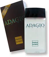 Мужская туалетная вода «Adagio» 100 мл