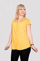 Модная женская блуза на лето