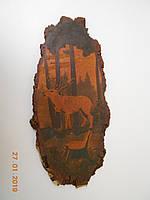 """Красивая картина плакет на срезе ясеня """"Карпатский  олень"""" 1960 г. Закарпатье., фото 1"""