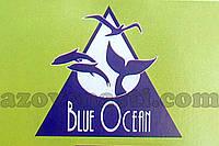 Сетеполотно Blue Ocean 55-0,17-200-150