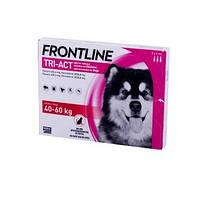 Frontline Tri-Act (Фронтлайн Три-Акт) капли от блох, клещей и комаров для собак весом от 40 до 60 кг (XL)