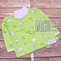 Тонкая хлопковая кофточка р 68 (3 4 5 месяцев) на кнопках для новорожденного детская ткань КУЛИР 4613 Зеленый