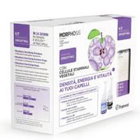 Framesi Morphosis Densifying Kit набор (шампунь и ампулы) от выпадения волос, Италия