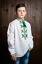 Вышиванка на мальчика Дубок, фото 6