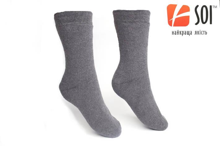 Шкарпетки Чоловічі Махрові 29 р. (43-44) сірий, фото 2
