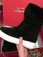 Сапоги зимние Salvatore Ferragamo размер 39 черные 08159, фото 1