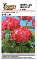 Власта F1 - семена пеларгонии зональной, Коуел - 10 семян