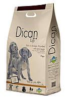 Dibaq DicanUp Pups  - сухой корм для щенков, кормящих и беременных сук с курицей