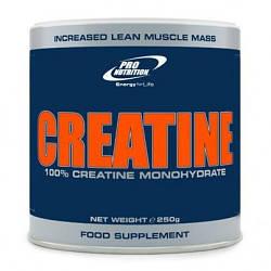Creatine 250g (Pro Nutrition)