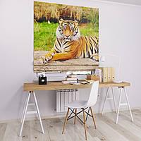 Римская штора с фотопечатью Тигр