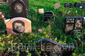 Пам'ятники домашнім тваринам
