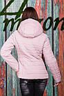 Женская куртка от производителя - модель 2019 - (кт-426), фото 7